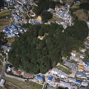 馬木八幡神社の社叢(県天然記念物)