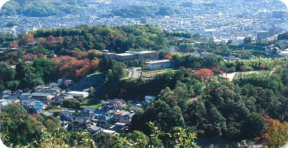 大内越山(おおちごやま)