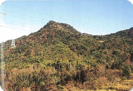 鷹の条山(たかのじょうやま)