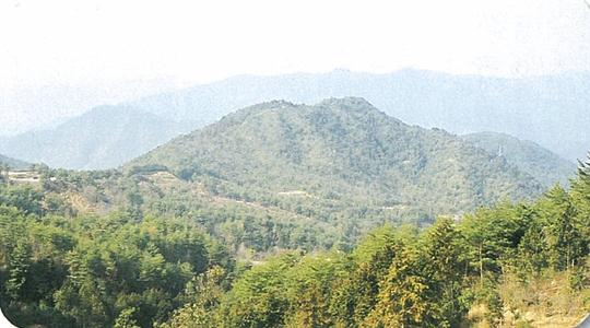 三本木山(さんぼんぎやま)