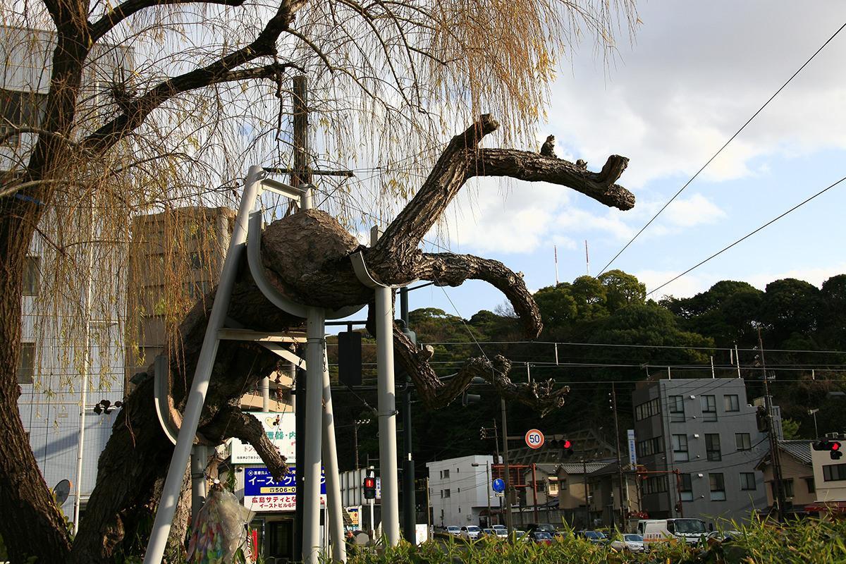 シダレヤナギ(鶴見橋東詰)(被爆樹木)