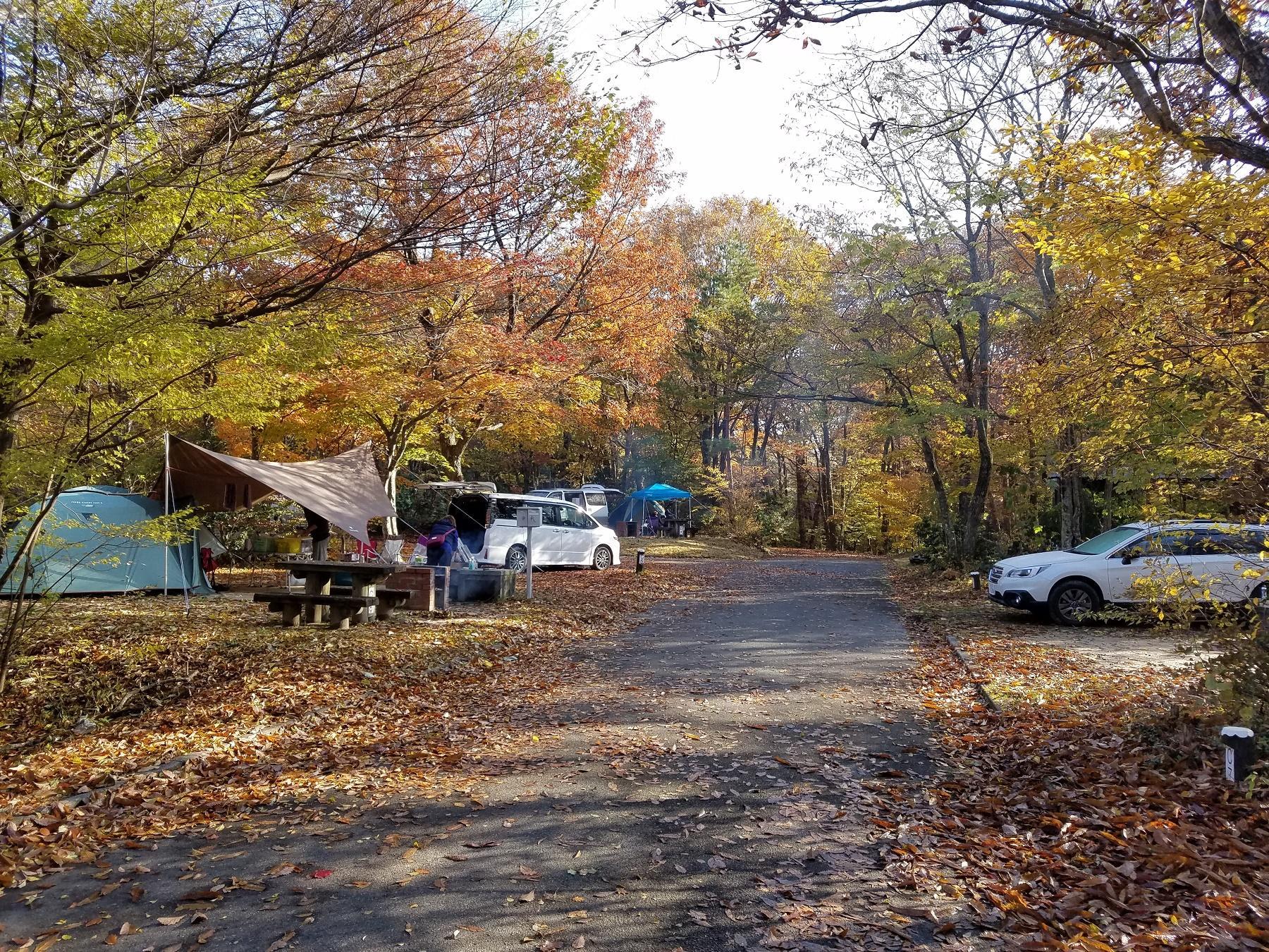 広島県立もみのき森林公園