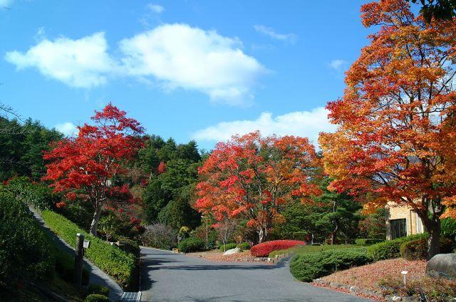 ひろしま遊学の森 広島県緑化センター・広島県立広島緑化植物公園
