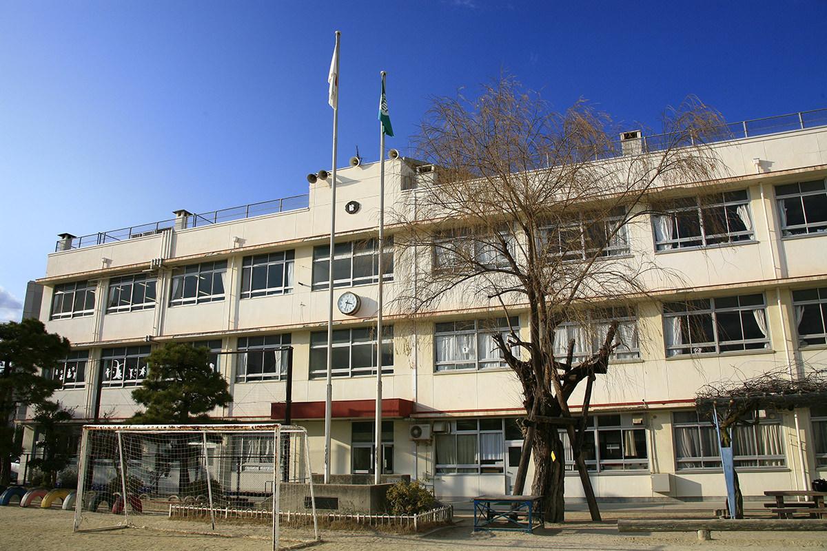 シダレヤナギ(皆実小学校)(被爆樹木)